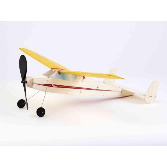 Aeromodel Pilot